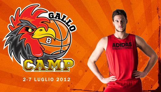 gallo camp